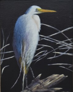 Night Egret