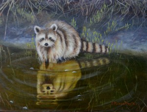 raccoon, by Esther Piazza Doyle