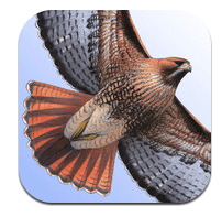 sibley field guide to the Birds app