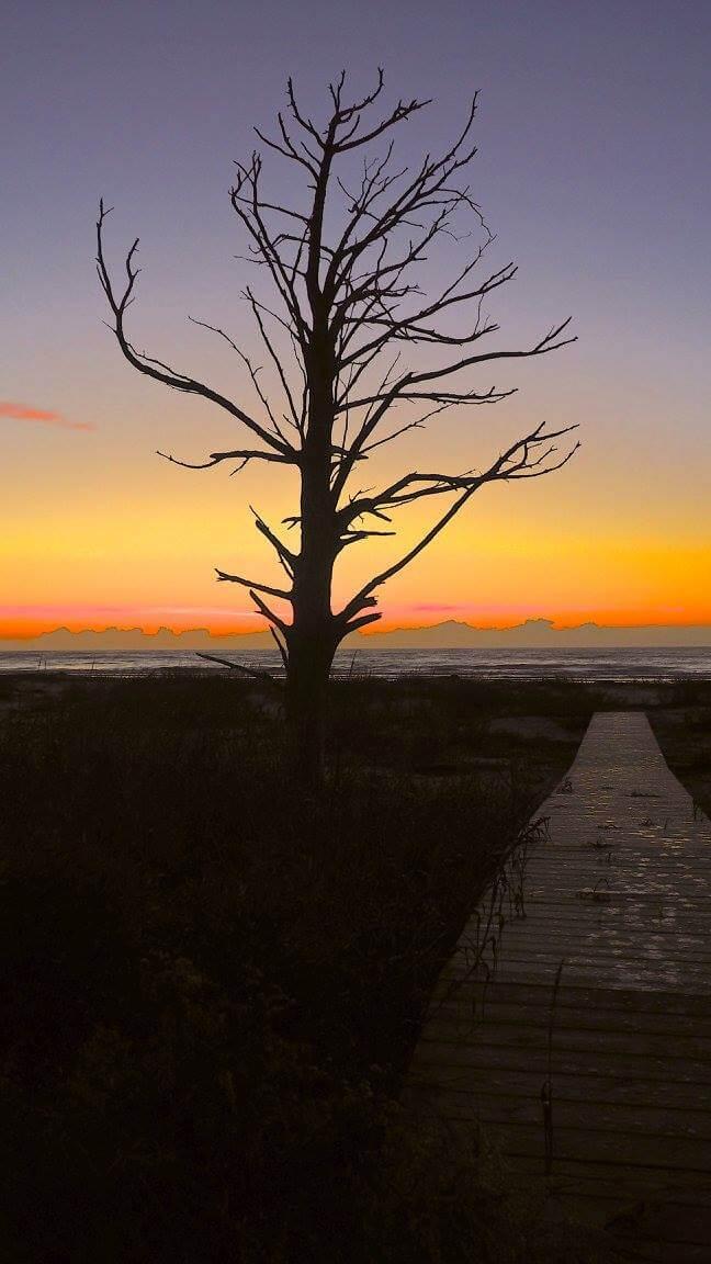dewees island sunrise