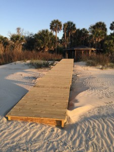 2015: Dewees Island Year in Review (photos)