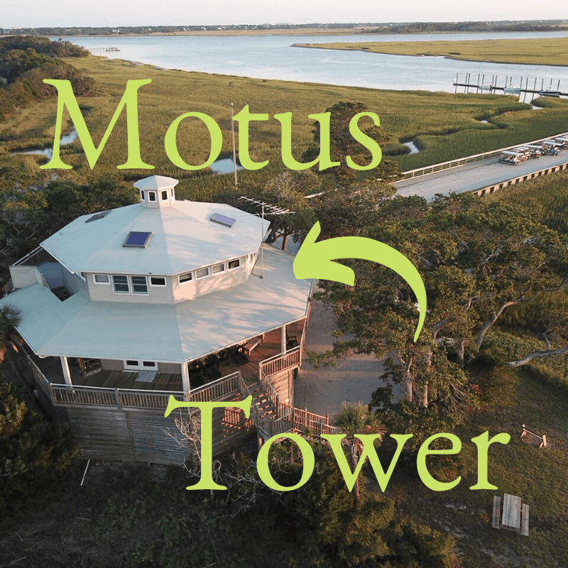 Motus tower